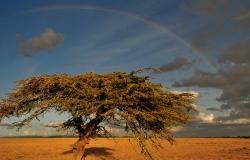 Nord Kenia
