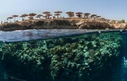 Amphoras Hotel reef,  Sharm el Sheikh, Red Sea, Egypt