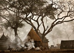 Nuer tribe. Gambella, West Ethiopia.