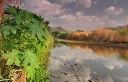 Mago National Park, Valle dell'Omo River, Etiopia, Africa