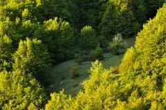 Parco Nazionale d'Abruzzo, Abruzzo