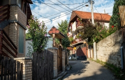 Erol's house